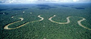 amazon rain forest, amazon river, brazil, tourist attractions, south america